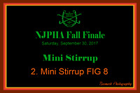 09/30/17 02. MINI STIRRUP FIG 8