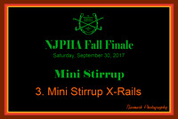 09/30/17 03. MINI STIRRUP X-RAILS