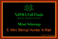 09/30/17 05. MINI STIRRUP HUNTER X-RAIL