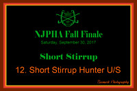09/30/17 12. SHORT STIRRUP HUNTER U/S
