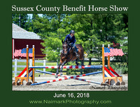 SUSSEX COUNTY BENEFIT HORSE SHOW #3 - June 16, 2018