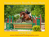 SUSSEX COUNTY BENEFIT HORSE SHOW #4 - June 23, 2018